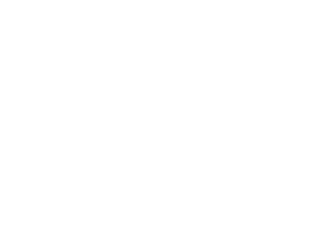 Lieuwe Kingma